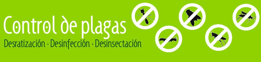 Control de plagas en Torrejón de Ardoz